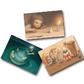 表紙:『おたんじょうびケーキ』ポストカード3枚セット