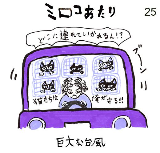 mirocoatari25-紫.jpg